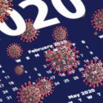COVID-19 year 2020